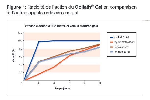 efficacite du gel insecticide golitah gel contre les cafards et blattes.