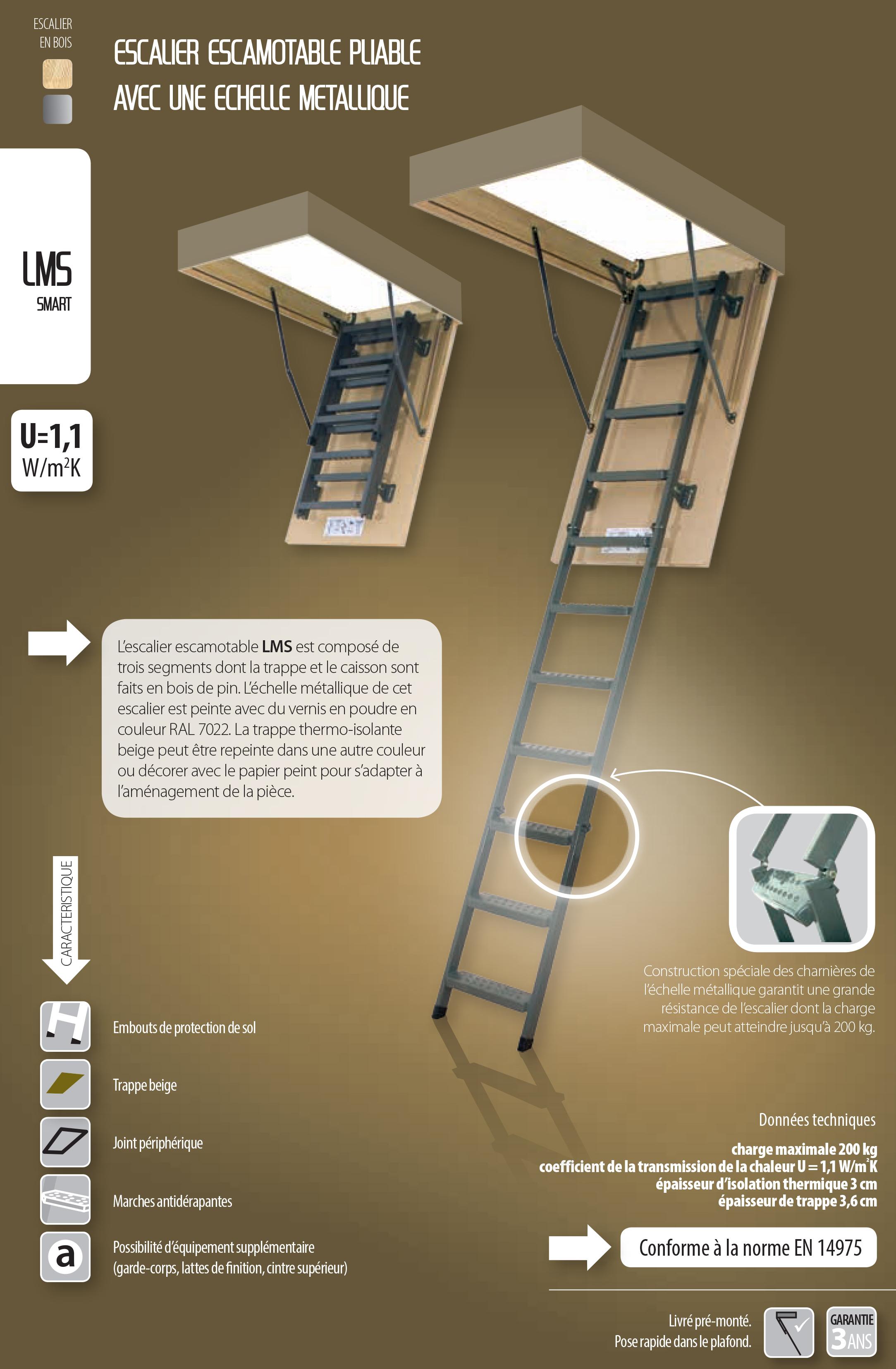 lms escalier echelle metal